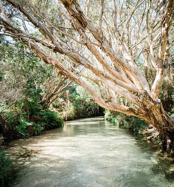 Fraser Island: Fraser Island Accommodation